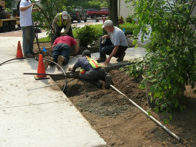 Commercial Landscape Contractor